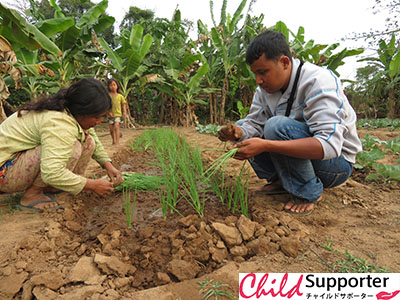 A villager planting vegetables and FH staff coaching and helping her1.jpg
