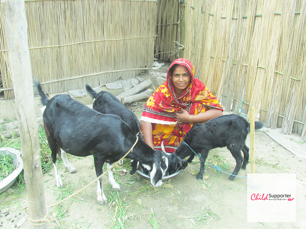 Raju's mother taking care of goats _web.jpg