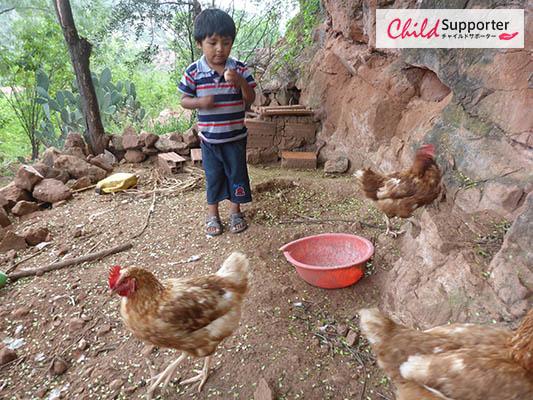WEB_Child with chicken.jpg